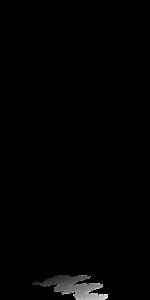 er-feb-2016-4